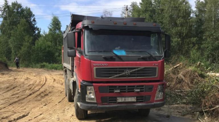 Департамент Росприроднадзора по СЗФО проверил сообщение о якобы незаконной добыче песка во Всеволожском районе Ленобласти и арестовал там экскаватор.
