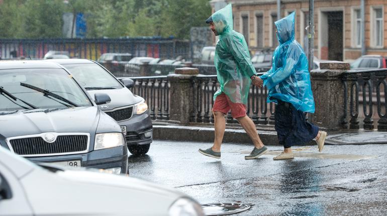 Жаркие выходные принесут в Петербург «потенциально опасную» грозу