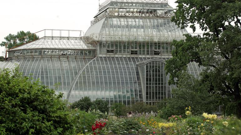 Солисты Мариинки выступят под открытым небом в Ботаническом саду