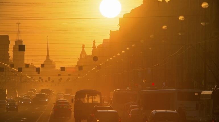 Начало рабочей недели в Петербурге будет не менее жарким