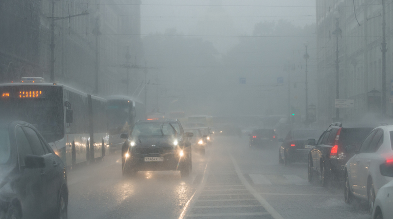 В середине рабочей недели в Ленинградскую область ворвется плохая погода. Жителям региона стоит опасаться сильного ветра и гроз. Непогоду стоит ожидать к среде.