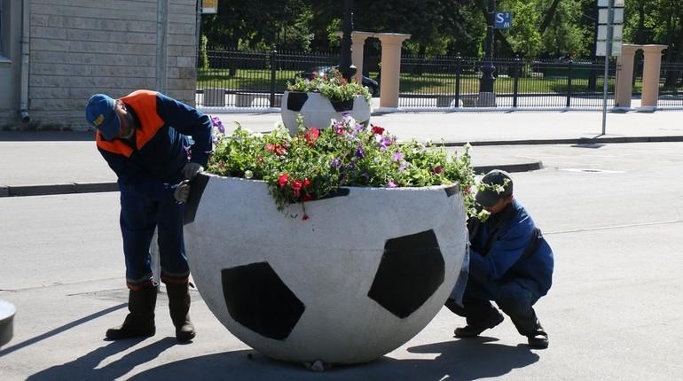 Под Петербургом на Зеленогорском шоссе украли стоящий на разделительном газоне талисман чемпионата мира по футболу 2018. Стоимость похищенной конструкции составляет 348 тыс. рублей.