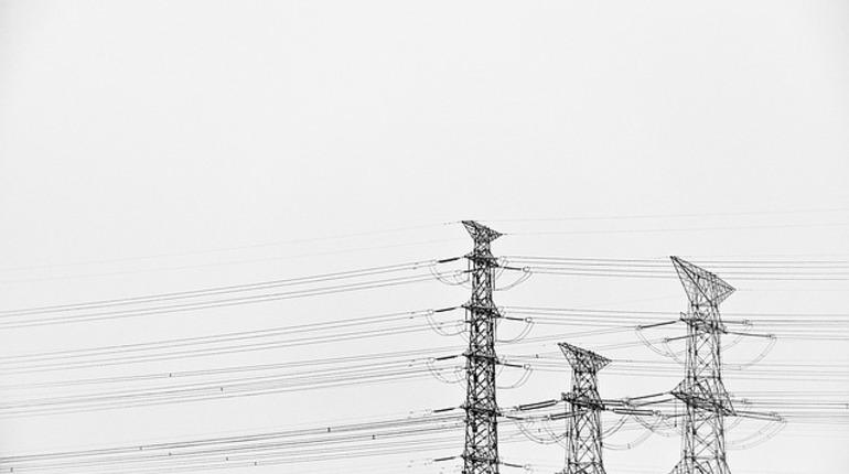 В Киришском районе Ленинградской области сегодня, 16 июля, отключили электроснабжение. Об этом сообщает ГУ МЧС по Ленобласти.