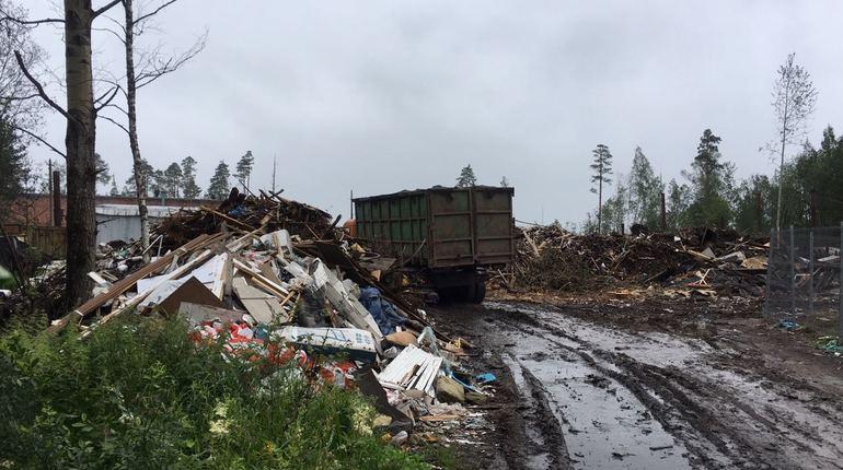 Жителей СНТ «Огоньки» травит дым от горящего мусора