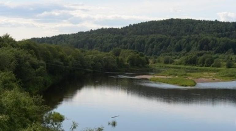В Ленинградской области начался очный этап Всероссийского конкурса «Зеленый маршрут».