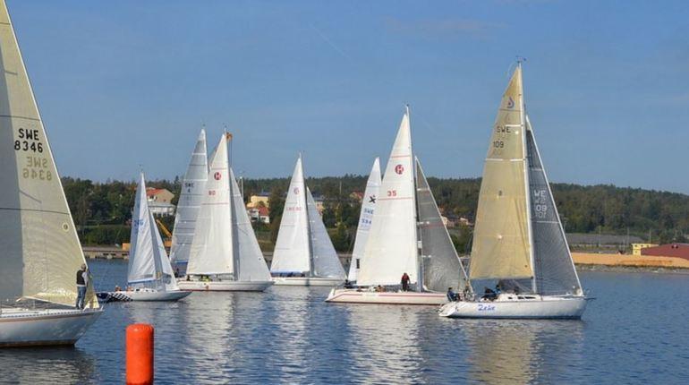 В яхт-клубе «Балтиец» выловили труп женщины