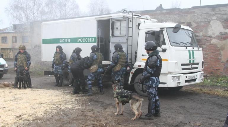 ОНК: на системном уровне в Петербурге пыток нет