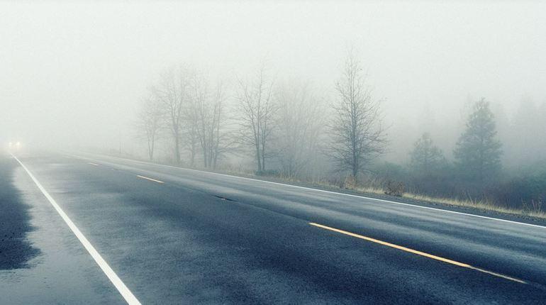 Вторник в Ленобласти начнется с тумана и ливней