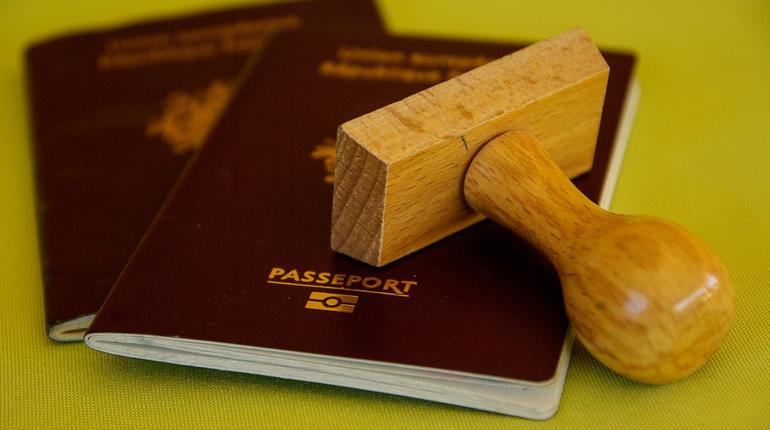 Клуб хоккея с мячом подозревают в подделывании паспортов российских спортсменов