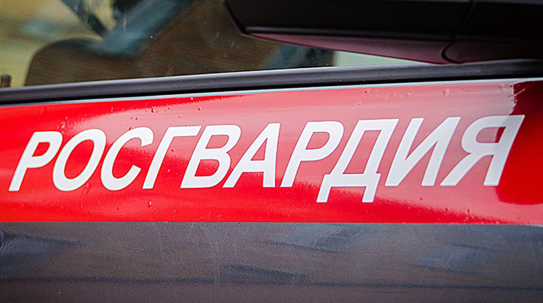 В Петергофе нетрезвой гражданке с битой не дали еще выпить