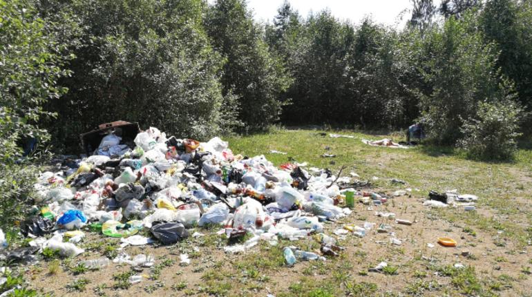 Купальщики завалили Орловский карьер мусором