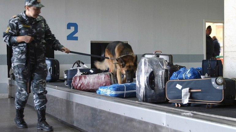 Германия выдала России фигуранта «кокаинового дела»