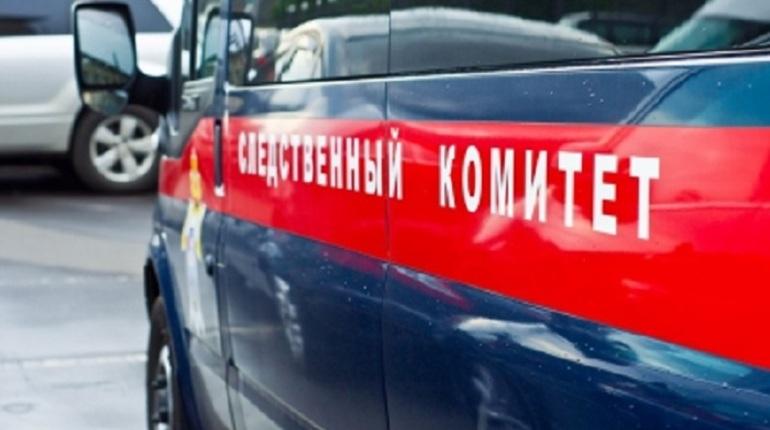 В Иркутске возбудили дело после наезда машины на полицейских