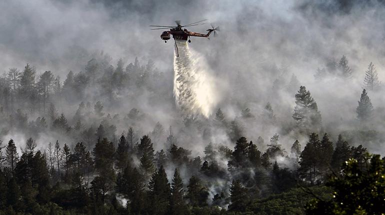 В Кингисеппском районе лесной пожар пошел на спад