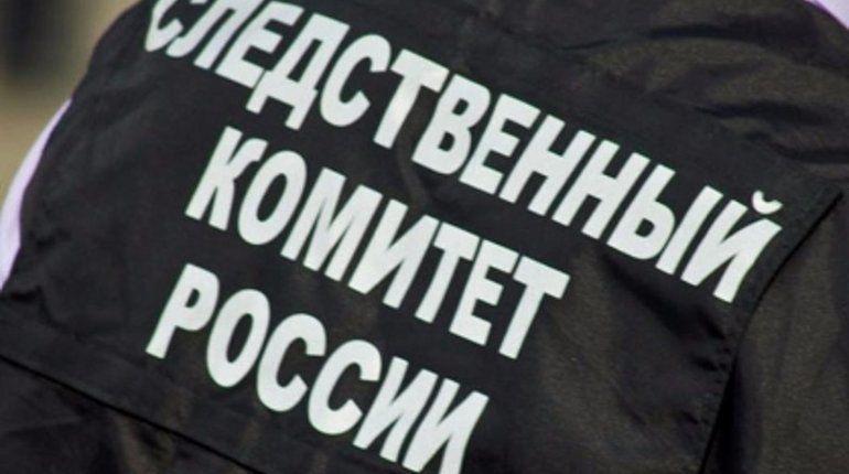 СКР Петербурга выявил новые факты травмирования детей в ТРЦ