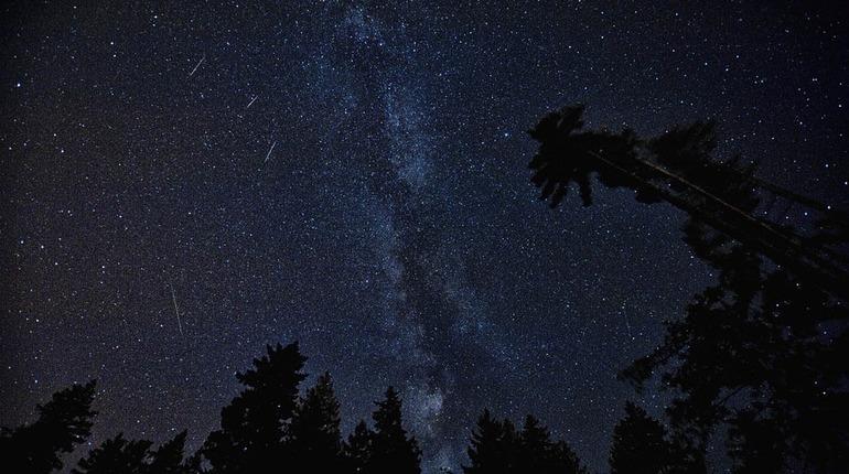 Петербуржцы смогут увидеть самый яркий звездопад