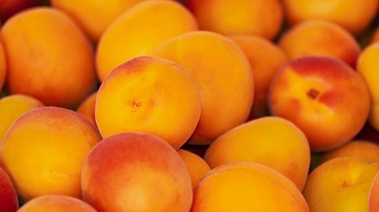 С 15 августа будут введены ограничения на поставки в Россию персиков и абрикосов из Сербии и Македонии.
