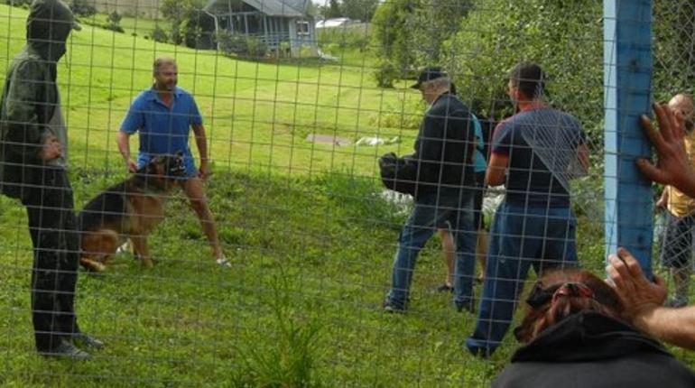 В Новом Токсово собственники вышли против активистов с бензорезом