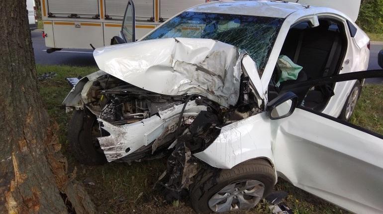 Петербуржцы сообщают о серьезной аварии в Московском районе Петербурга. Водитель чудом остался жив, врезавшись в дерево.