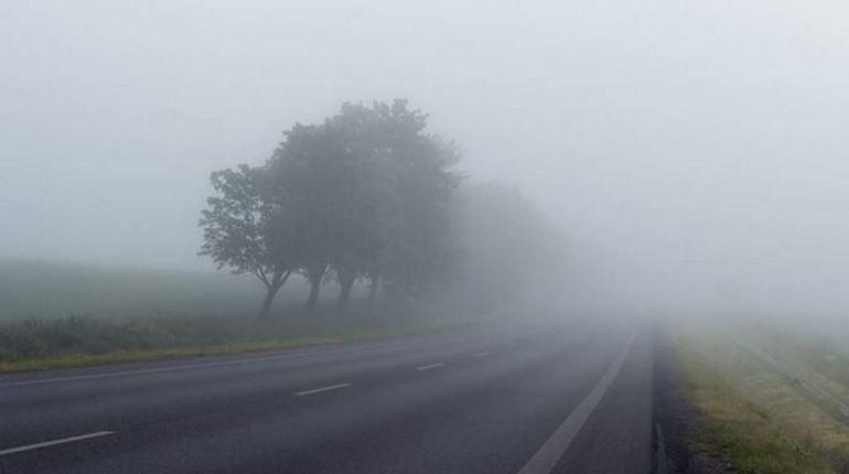 В четверг Ленобласть окутает туман