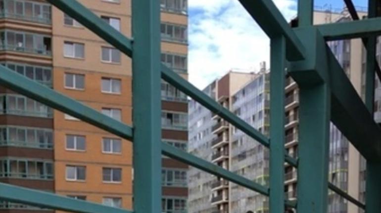 На детской площадке в Кудрово произошла массовая драка прямо на детской площадке. Отношения выясняли чернокожие молодые люди.