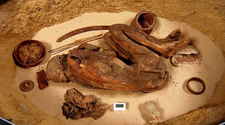 Найденная в Египте мумия оказалась старше, чем фараоны. Это означает, что практика бальзамирования появилась не менее чем на 1500 лет раньше, чем считается.