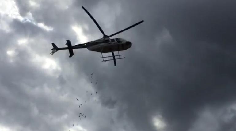 В Ленинградской области отметили День Воздушного флота России, который праздную в 19 августа. Накануне в честь праздника в Агалатово летчик порадовал детей сладостями, сброшенными прямо с вертолета.