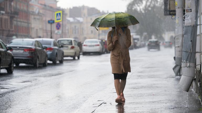 В Петербурге и Ленинградской области на ближайшие 36 часов объявили желтый уровень погодной опасности. Синоптики ждут в Северной столице грозу и ливни.