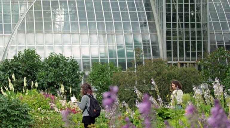 Ботанический сад ищет волонтеров из-за безденежья