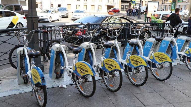 Чиновники «сливают» велосипедизацию Петербурга