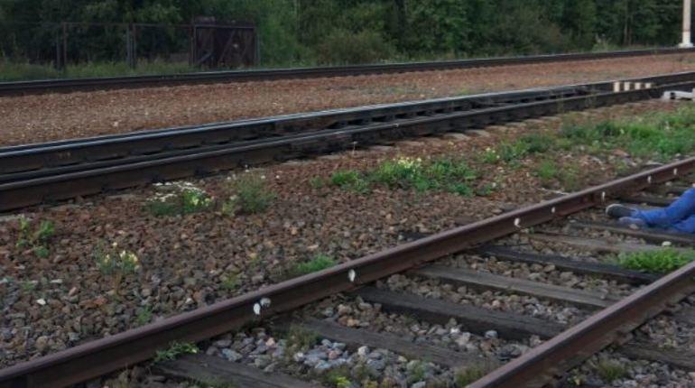 Около станции Новый Петергоф найден раненый мужчина