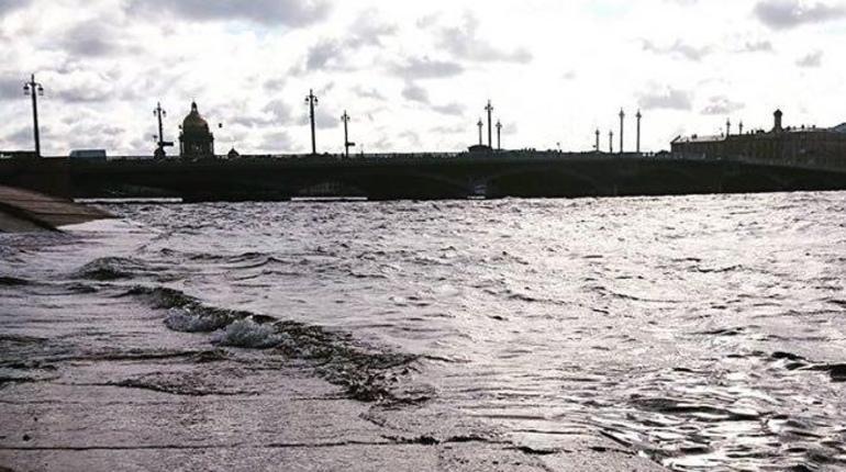 Уровень воды в Неве сегодня подскочил так, что стали подтапливаться набережные. В соцсетях появляются фотографии разбушевавшейся реки, а горожане начали заглядывать на сайт дамбы, которая защищает город от наводнений.