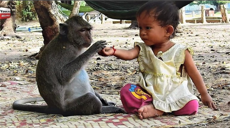 Ученые обнаружили, что движения рук и тела, которые используют маленькие дети для общения, на 96 процентов совпадают с жестами обезьян.