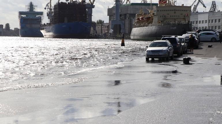 Ливни и сильный ветер выгнали Неву из берегов. Пока петербуржцы бегут к набережным за фотосессиями, поспешить туда следует и автовладельцам, оставившим свои машины рядом с пассажирским терминалом.