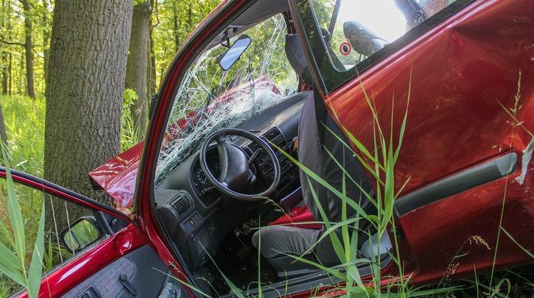 В Выборгском районе Ленинградской области произошла авария, в которой погиб 19-летний молодой человек.