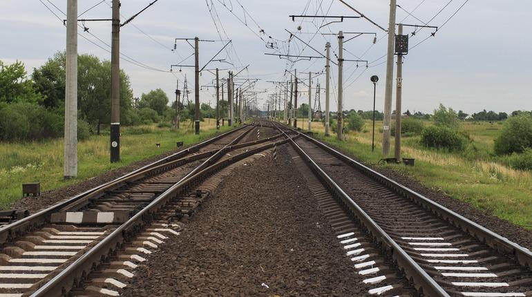 В Ленинградской области усовершенствовали процесс оформления льготных проездных билетов
