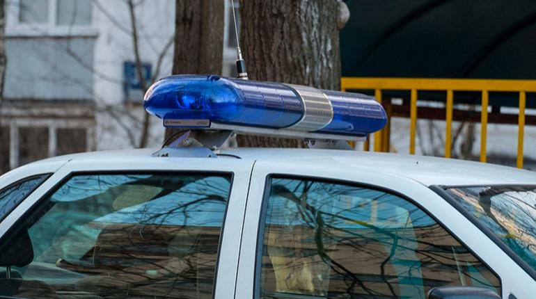 Неизвестные в Гатчинском районе Ленобласти напали на предпринимателя рядом с деревней Романовка и забрали у пострадавшей 700 тысяч рублей, сообщает пресс-служба ГУ МВД по Петербургу.