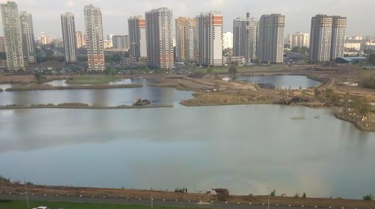 Прокуратура Фрунзенского района Петербурга начала проверку сообщений о перевернувшемся бульдозере в карьере будущего парка Героев-Пожарных. В результате в воде образовалось крупное нефтяное пятно.