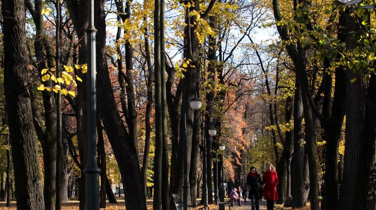 В субботу, 22 августа, в Петербурге начнется хозяйствовать настоящая осень. Дни станут прохладнее, но повода готовиться к суровой погоде нет. Октябрь, по предварительным прогнозам синоптиков, будет немного теплее, чем обычно, сообщил