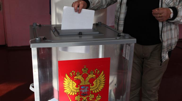 В ходе второго тура губернаторских выборов во Владимирской области лидирует кандидат от ЛДПР Владимир Сипягин. По итогам подсчета 98,58% голосов он набирает более 57%, против 37,33% своего оппонента от