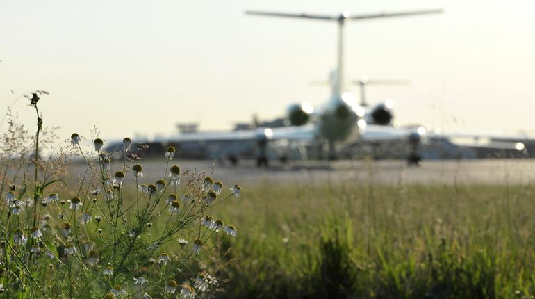 Рейс авиакомпании Nordstar Airlines из Петербурга в Москву вылетел с задержкой в 9 часов. Об этом сообщается на онлайн-табло сайта Пулково.