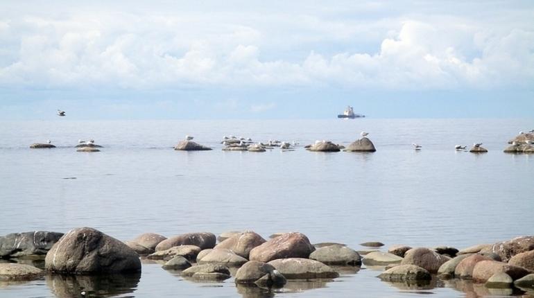 МИД РФ предостерег Украину от выхода из договора по Азовскому морю
