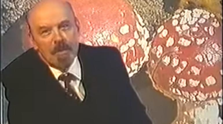 Ленин стал грибом, в мост врезался танкер с нефтью: день в истории Петербурга