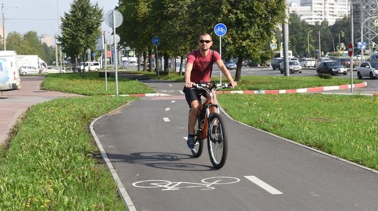 УФАС постановило заново провести аукционы на велодорожки за 47 млн