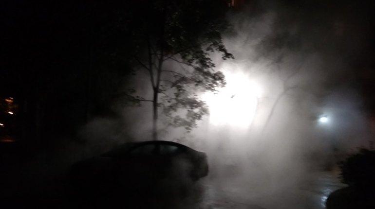 В сети сообщили о коммунальной аварии на улице Вавиловых 2 октября. Автор поста уточнил, что труба с горячей водой лопнула рядом с домом 11/6. Особенно жаль владельцев машин, ведь их железные кони попали под удар.