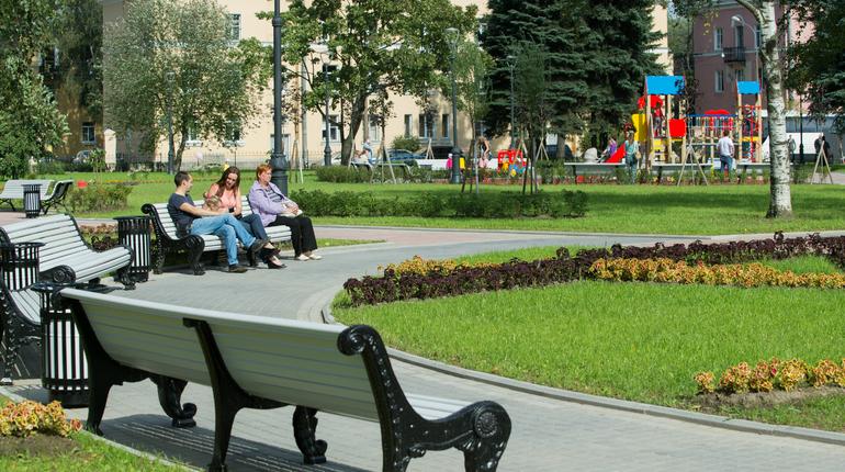 В семи районах Петербурга не хватает парков и скверов.  От нехватки зелени страдает, в том числе и центр Петербурга.