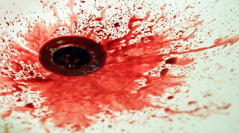 В Кировском районе Ленобласти обнаружено тело 21-летнего хозяина дома с признаками насильственной смерти и отчленением некоторых частей тела.