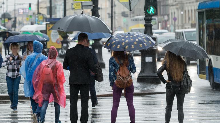 Четверг встретит петербуржцев сильным ветром и дождем