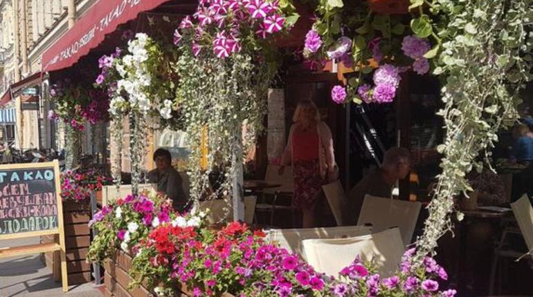 Активисты довольны сносом летних террас в петербургских кафе