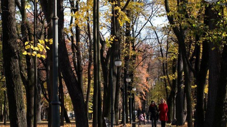 Облачная погода и небольшой дождь ожидает петербуржцев в среду, 10 октября.